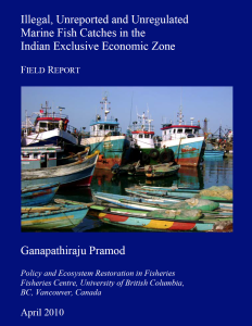 India - IUU REport (MRAG 2010)